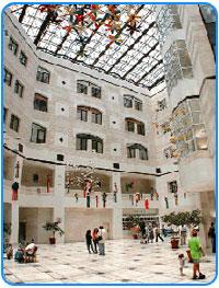 Лечение в Израиле. Детская больница Шнайдер
